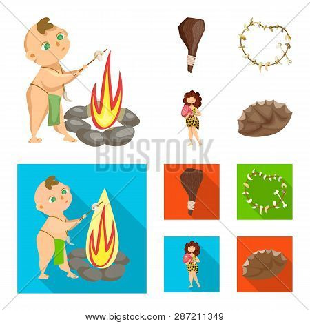 Isolated object of evolution  and prehistory symbol. Set of evolution  and development  stock vector illustration. poster