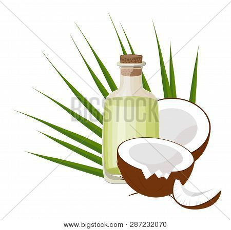 Coconuts And Coconut Oil With Tropical Palm Leaves. Healthcare. Alternative Therapy. Raster Illustra