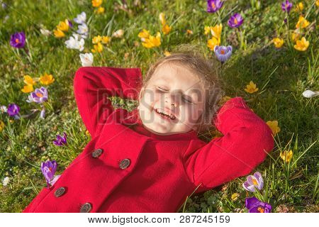 Child Enjoys Spring, Sun And Flowers. Smiling Kid Is Lying On The Green Grass On The Lawn Among The