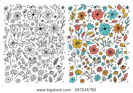 Doodle Flowers Hand Drawn Floral Set. Flowers Cartoon Drawing, Coloring Floral. Vector