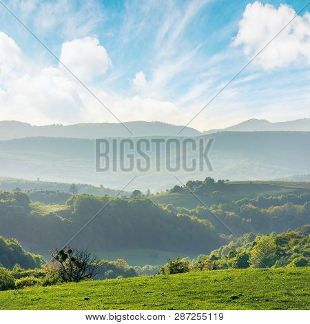 Green Rolling Hills Of Romania Countryside At Sunrise. Agricultural Field With Green Grass. Mountain