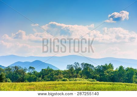 Beautiful Sunny Day In Mountainous Countryside. Row Of Trees Behind The Field. Mountain Ridge In The