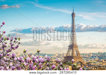 Famous Eiffel Tower And Paris Roofs With Spring Tree, Paris France