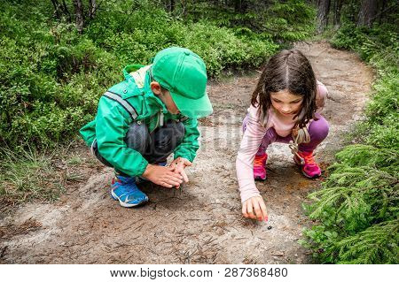 Little Children Boy And Girl Sitting On Forest Ground Exploring And Learning About Nature And Insect