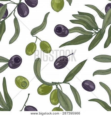 Botanical Seamless Pattern With Organic Olive Tree Branches, Leaves, Black And Green Ripe Fruits Or