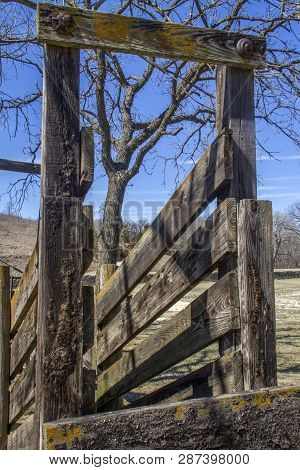 Old Wood Cattle Loading Chute In Rural Kansas