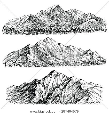 Mountains Peak Vector Hand Drawn Landscape. Ridge And Ranges With Forest Panoramic View.