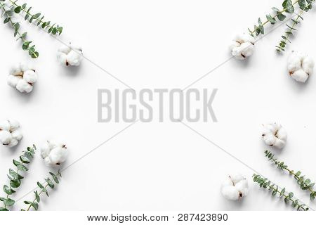 Composition With Eucalyptus Branches And Cotton Flowers On White Background Top View, Flat Lay Space