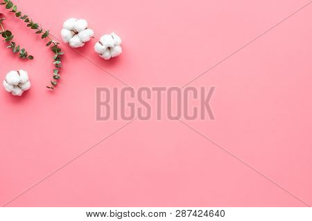 Composition With Eucalyptus Branches And Cotton Flowers On Pink Background Top View, Flat Lay Space
