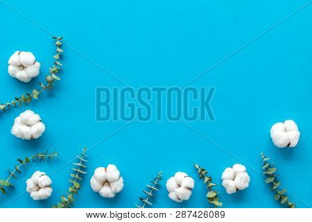 Flowers Border With Green Eucalyptus Branches And Dry Cotton On Blue Background Top View Copy Space.