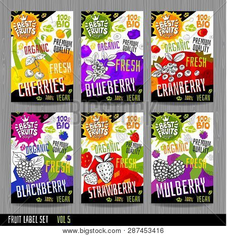 Food Labels Stickers Set Colorful Sketch Style Fruits, Spices Vegetables Package Design. Cherries, S