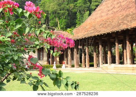 Bougainvillea flowers and Magul Maduwa (Audience Hall) in Sri Dalada Maligawa (Temple of tooth relic, Temple of Buddha tooth), Kandy, Sri Lanka. UNESCO world heritage site. Focus on flowers poster
