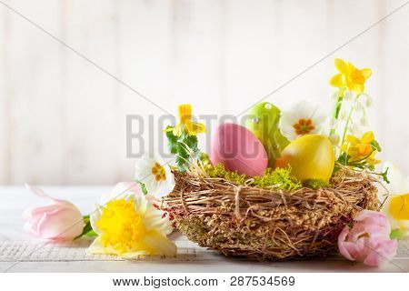 Easter composition with colorful Easter eggs in nest, spring flowers and branches of pussy willows on wooden background. Easter card with copy space.