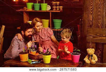 Environment Concept. Little Boy Help Mother Ad Father Planting Flower To New Pot, Environment. Envir