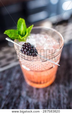 Cocktail Drink Bramble With Black Berries And Mint At Barcounter In Night Club Or Restaurant.