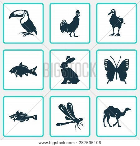 Zoo Icons Set With Dragonfly, Butterfly, Rabbit And Other Codfish Elements. Isolated Vector Illustra