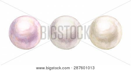 Pearl Set Shiny Natural Sea Nacreous Isolated On White Background. Watercolor Hand Drawn Realistic I