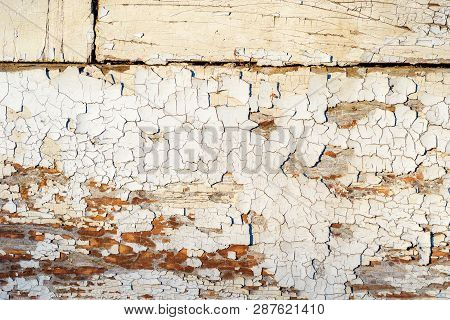 Cracked White Paint Peeling Off The Wooden Surface, Grunge Rustic Background