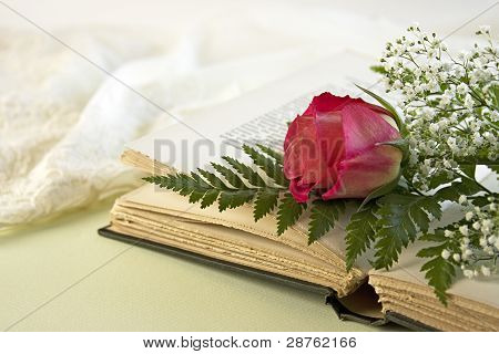 Opened Book And A Single Red Rose