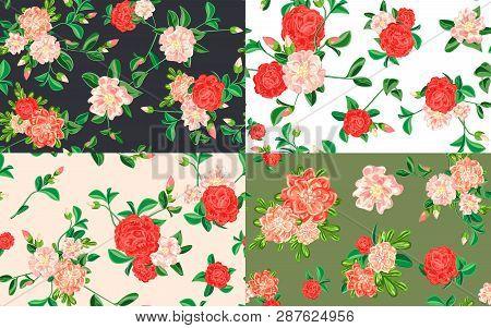 Camellia Pattern Set. Cartoon Illustration Of Camellia Vector Pattern Set For Web Design