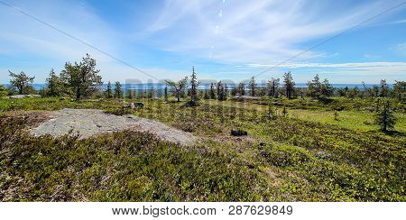 Summer Panorama View At Riisitunturi, A Fell And A National Park In Kuusamo, Finland.  Peaceful Ever