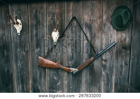 Professional Hunters Equipment For Hunting. Rifle, Deer, Roe Deer Trophy Sculs And Others On A Woode