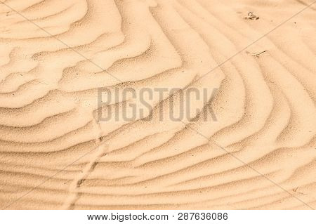 Close Up Sand Texture Of Sand Dune For Background