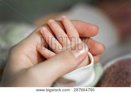 Close Up Babys Hand Put On Moms Hand. Mom Nursing Baby. Mom And Baby Boy Relax At Home. Nursery Inte