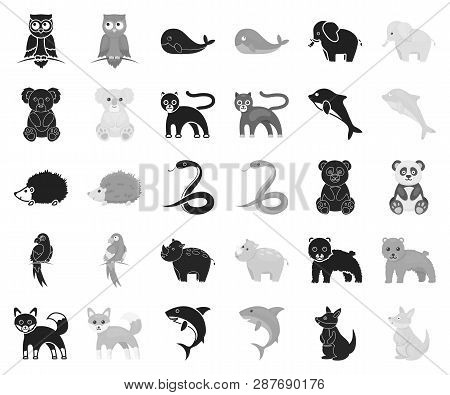An Unrealistic Animal Black, Monochrome Icons In Set Collection For Design. Toy Animals Vector Symbo