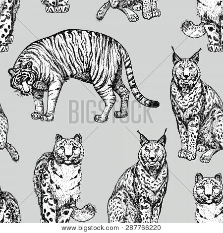 Seamless Texture With Wild Cats In A Grey Background. Clipart For Art Work And Weddind Design.