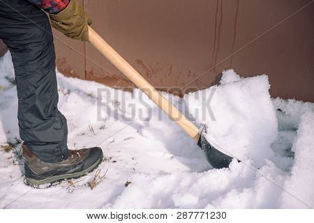 Clean The Snow With A Shovel. The Man Shovels Snow Shovels. Snow Shovel In Hand. Cleaning The Area I