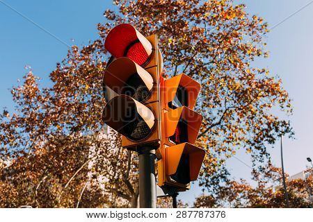 Traffic Light With Red Signal, Green Trees And Clear Blue Sky On Background, Barcelona, Spain