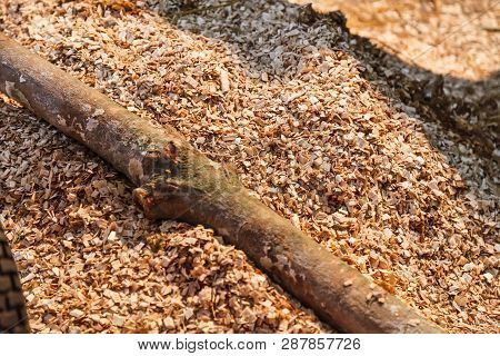 Ground Shredded Chipped Wood Chips Used As Biomass Solid Fuel, Raw Material For Producing Wood Pulp,