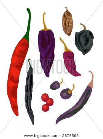 Ioslated Chili Peppers.