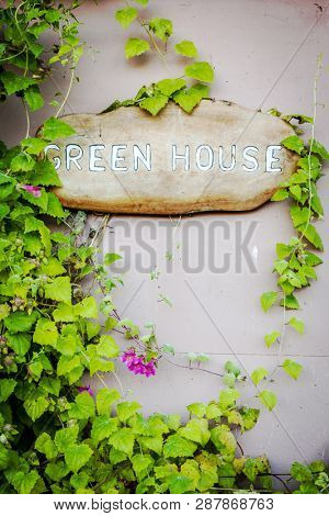 Green House sign on a wooden board surrounded by a green vine with flowers