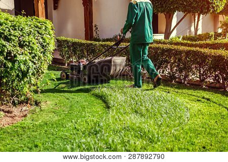 Man Mowing The Grass With A Lawn Mower By Hotel. Worker Cuts The Lawn In Summer Garden Wearing Unifo