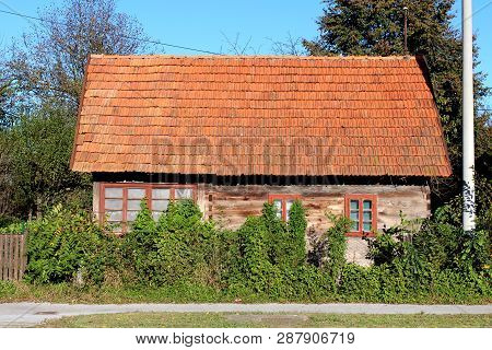 Very small abandoned wooden family house with large windows partially overgrown with crawler plants and dense garden vegetation next to concrete electrical utility pole on trees and clear blue sky background poster