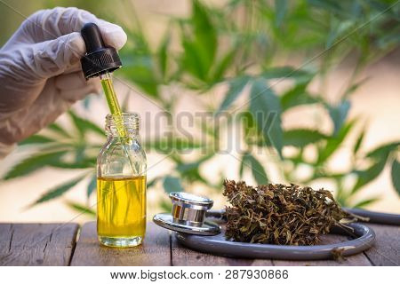 Hemp Oil, Medical Marijuana Products Including Cannabis Leaf, Dried Bud, Cbd  And Hash Oil Over Blac