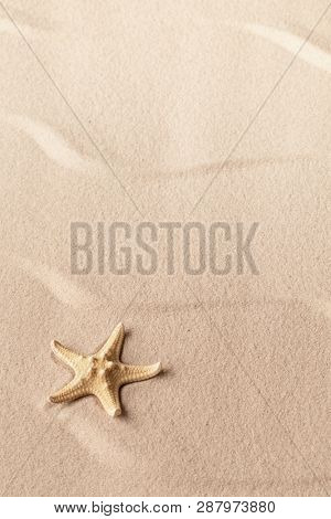 one single starfish on rippled tropical beach sand. Concept with seastar for freedom and vacation. Textured background with copy space.
