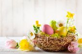 Easter composition with colorful Easter eggs in nest, spring flowers and branches of pussy willows on wooden background. Easter card with copy space. poster