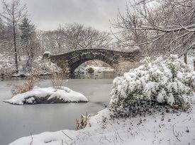 Gapstow Bridge In Central Park, New York ?ity