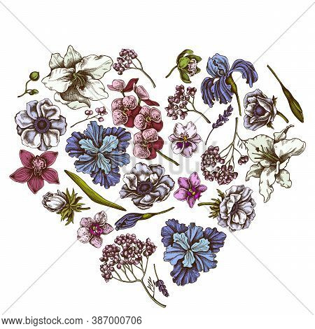 Heart Floral Design With Colored Anemone, Lavender, Rosemary Everlasting, Phalaenopsis, Lily, Iris S