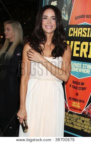 LOS ANGELES - OCT 18:  Abigail Spencer arrives at  the