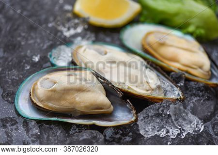 Seafood Shellfish Steamed Mussels / Fresh Mussels On Black Plate And Ice With Lemon And Lettuce For