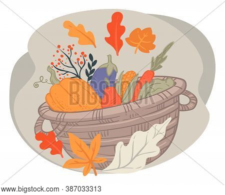 Basket With Harvested Vegetables, Autumn Pumpkin And Aubergines