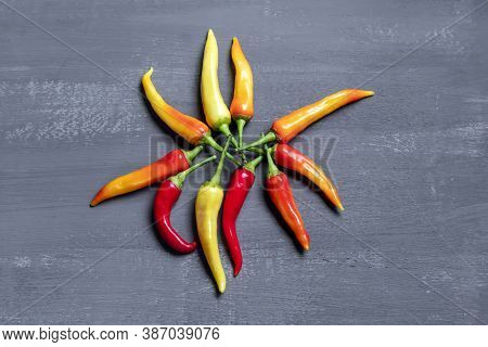 Variety Of Chili Peppers. Red, Green And Yellow Chili Pepper On Dark Background Top View.