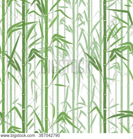 Bamboo Forest. Monochrome Seamless Pattern. Vector Illustration On White Background. Texture Or Patt
