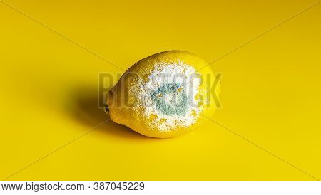 Spoiled Rotten Yellow Lemon With White Blue Mold On A Yellow Background. It Cant Be Eaten. Close-up.