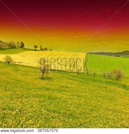 Green And Yellow Fields In Swiss Alps At Sunset