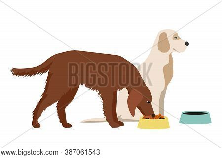 Vector Hungry Dog Eating Food From Bowl Isolated On White Background. Domestic Or Homeless Animal An